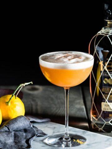 1888 Rum Sour Hero Horizontal