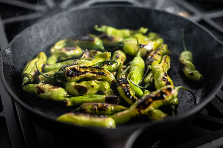 blistered shishito peppers in cast iron skillet 1