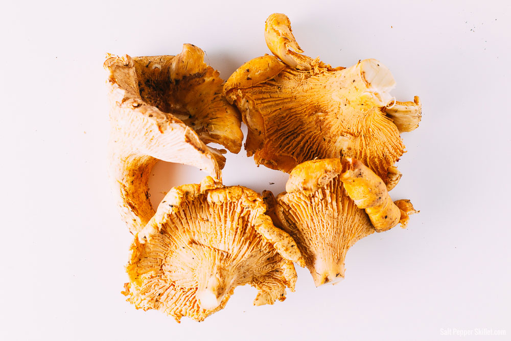chanterelle-mushrooms