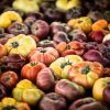 heirloom tomatoes at farmers market