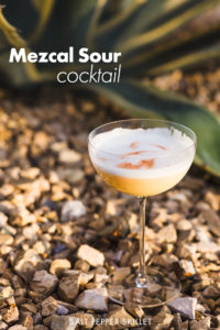 mezcal sour cocktail