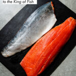 Salmon 101 - The Ultimate Guide