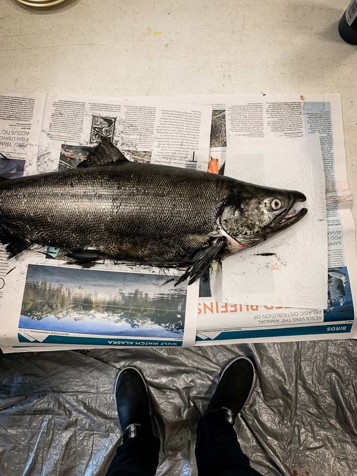 salmon fish printing