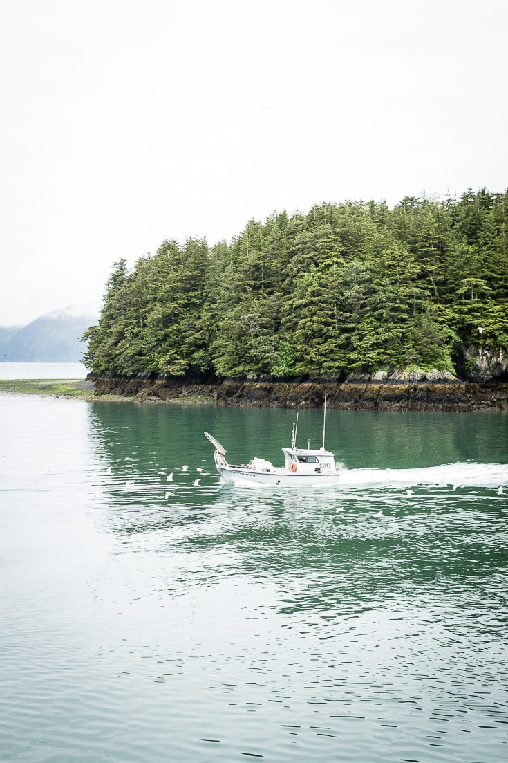 Copper River Salmon - A Journey from Alaska to our Dinner Plates