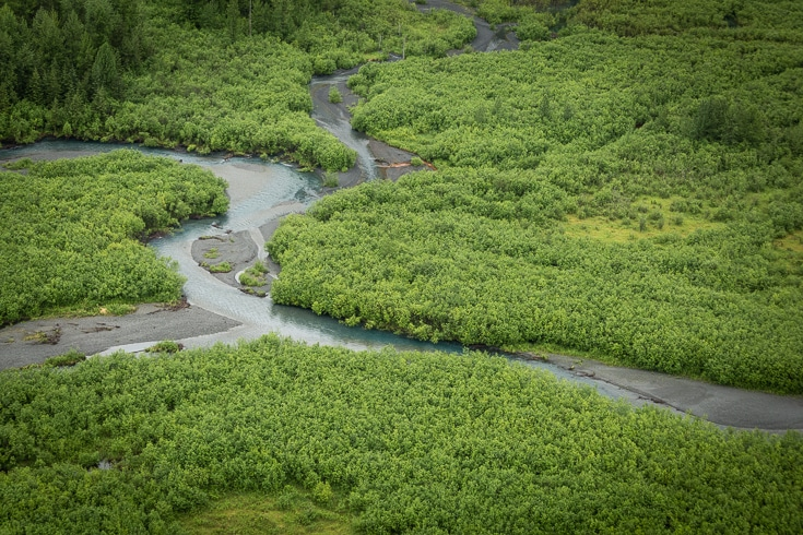 wetlands near the copper river mount